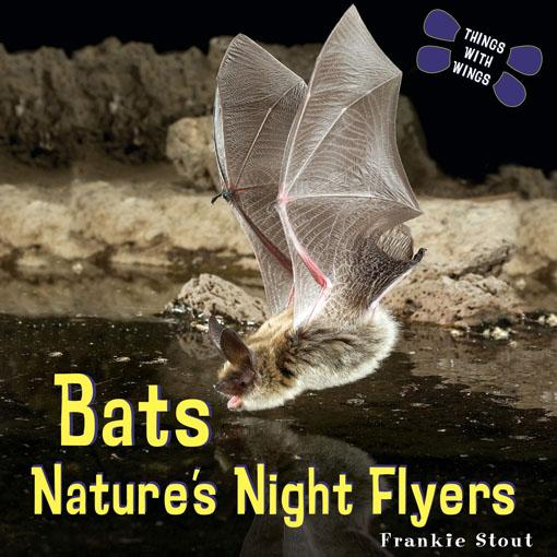 Bats: Nature's Night Flyers