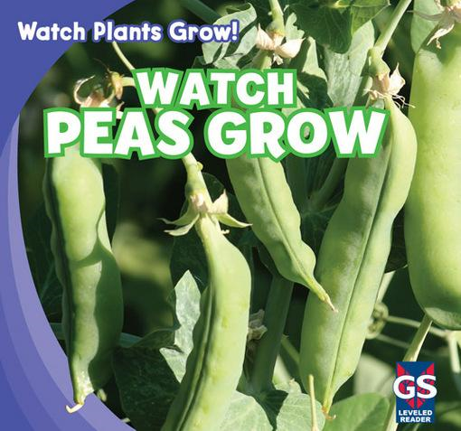 Watch Peas Grow