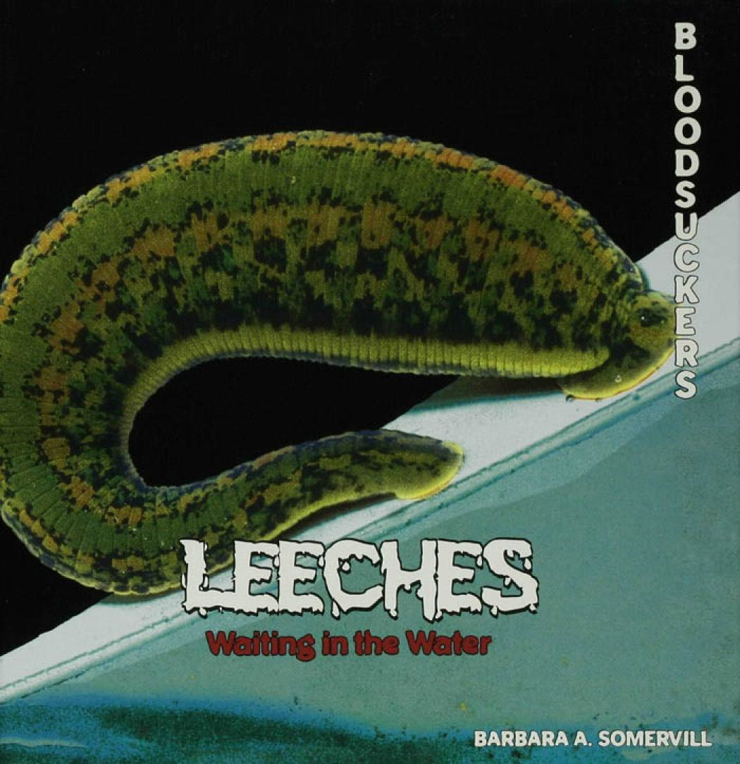 Leeches: Waiting in the Water