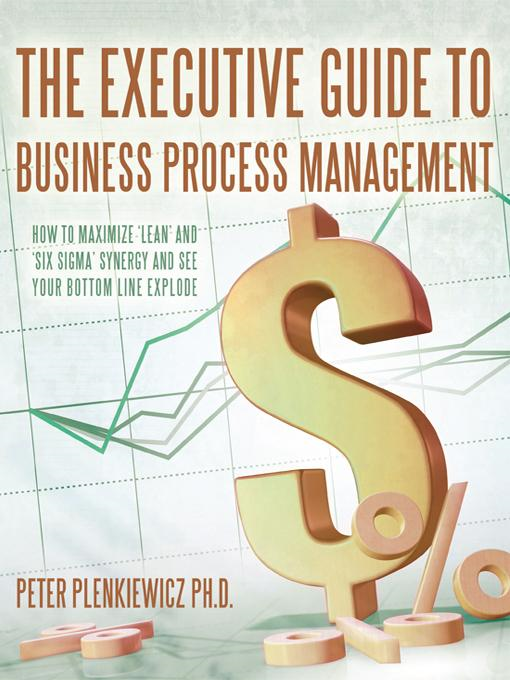 The Executive Guide to Business Process Management: How to Maximize 'Lean' and 'Six Sigma' Synergy and See Your Bottom Line Explode By: Peter Plenkiewicz Ph.D.