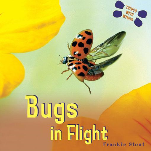 Bugs: In Flight