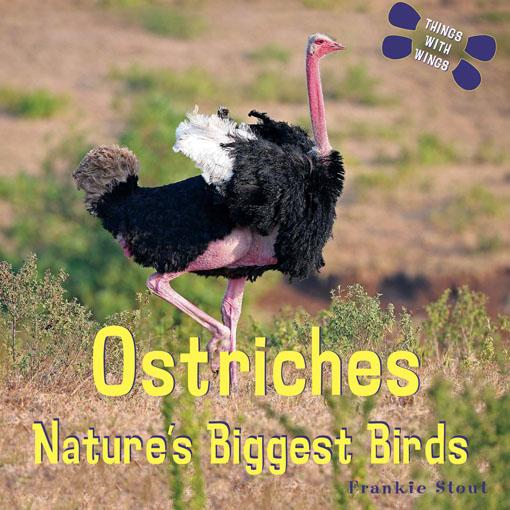 Ostriches: Nature's Biggest Birds