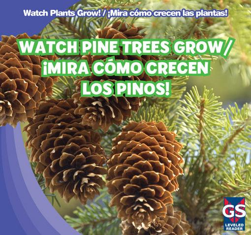 Watch Pine Trees Grow / �Mira c�mo crecen los pinos!