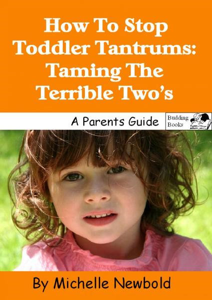 How To Stop Toddler Tantrums: Taming The Terrible Two's