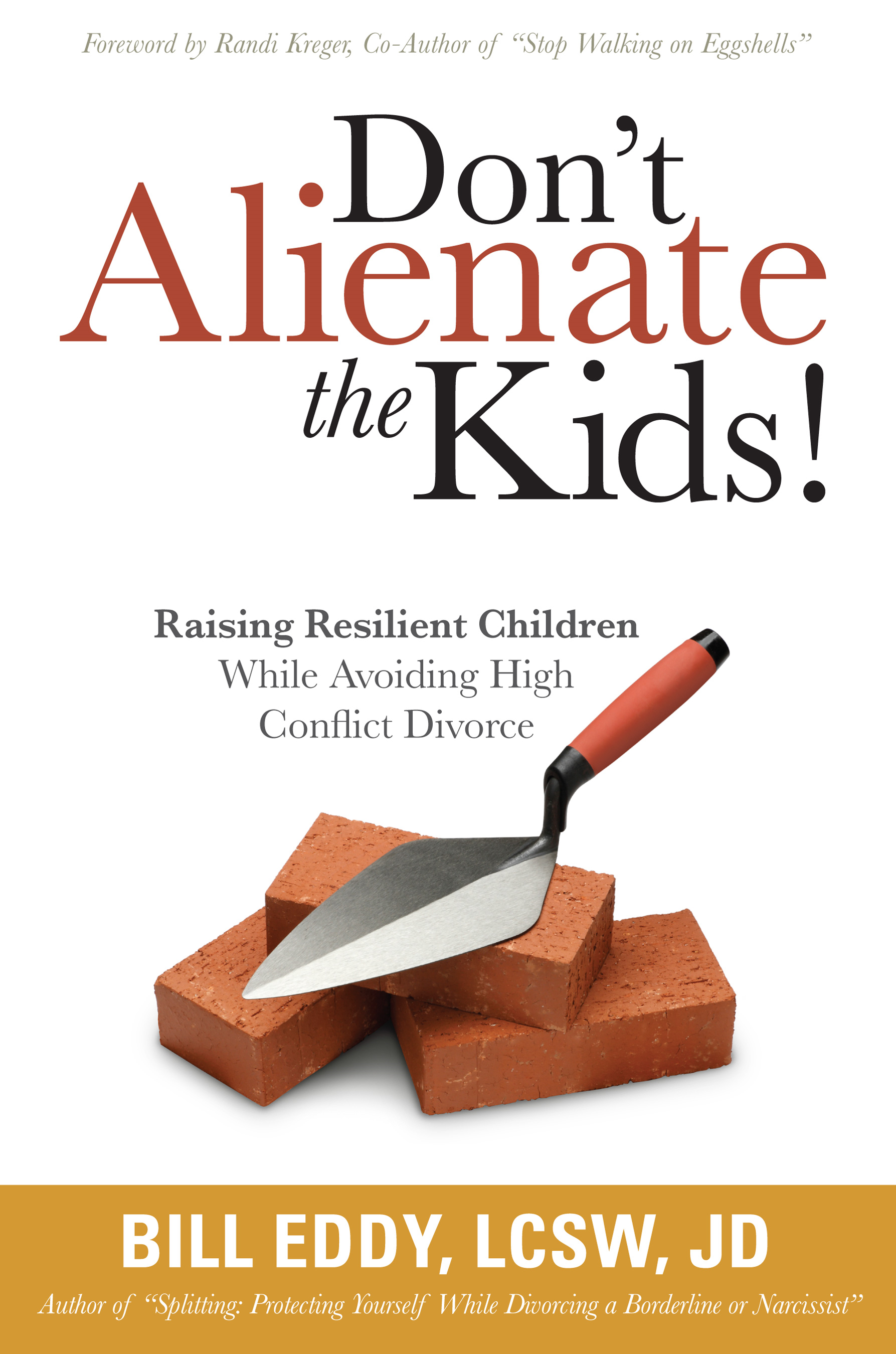 Don't Alienate the Kids!: Raising Resilient Children While Avoiding High Conflict Divorce