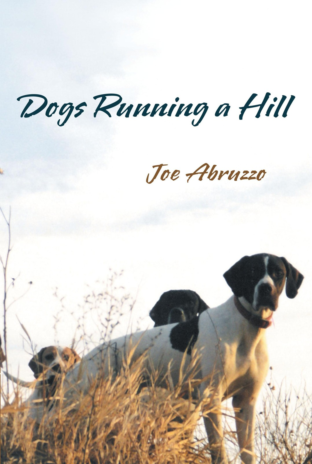 Dogs Running a Hill By: Joe Abruzzo