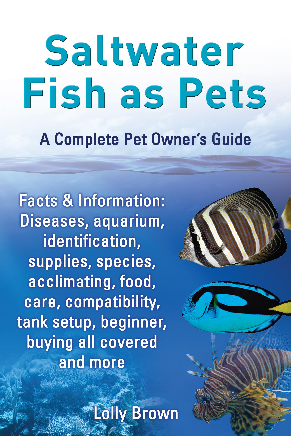 Fish aquarium information - Lolly Brown Saltwater Fish As Pets Facts Information Diseases Aquarium
