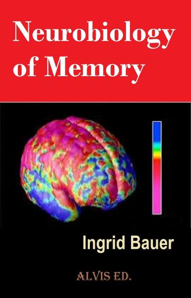 Neurobiology of Memory