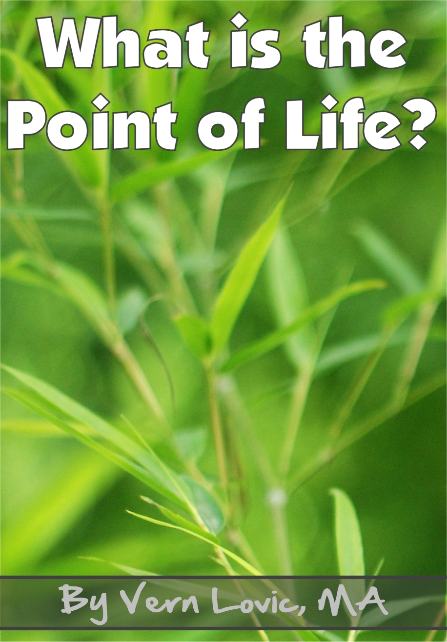 Vern Lovic - What is the Point of Life?