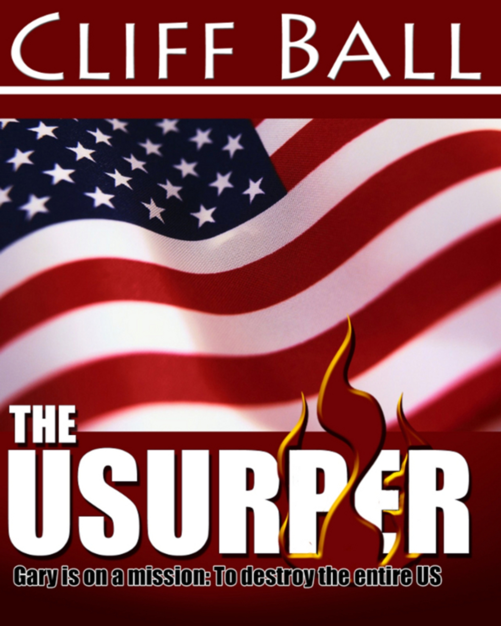 The Usurper: a political suspense thriller