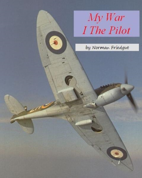 My War: I  The Pilot By: norman freidgut