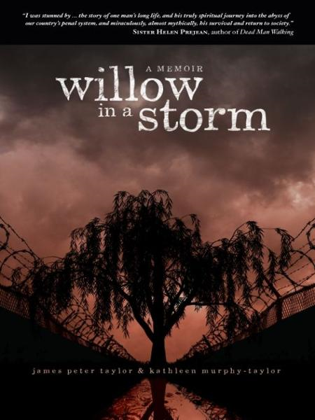Willow in a Storm