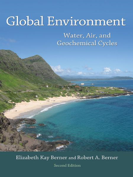 Global Environment Water,  Air,  and Geochemical Cycles (Second Edition)