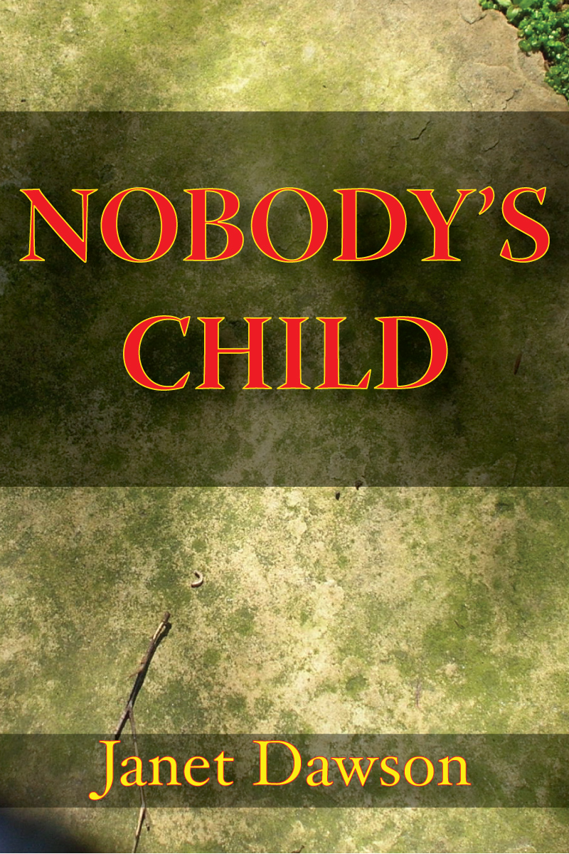 Nobody's Child By: Janet Dawson