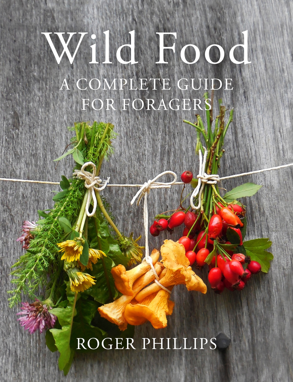 Wild Food A Complete Guide for Foragers