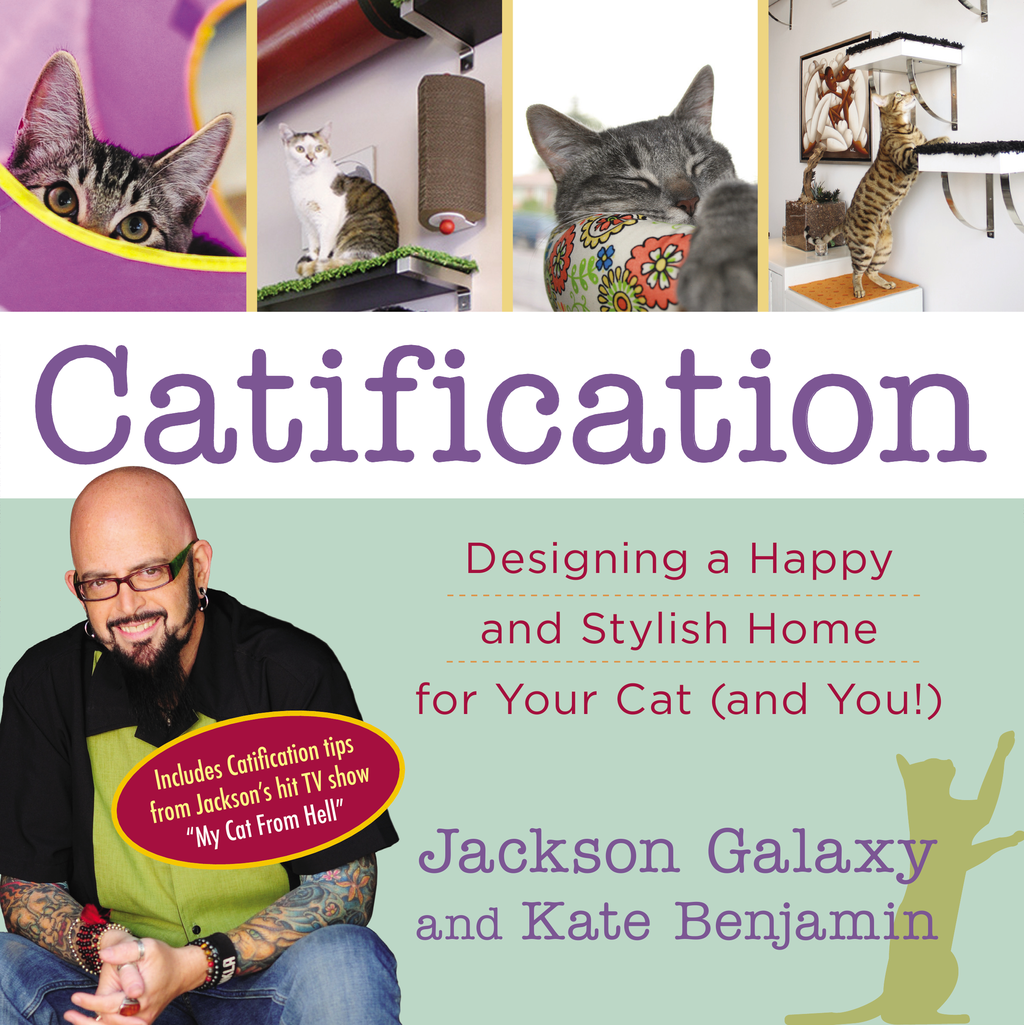 Catification Designing a Happy and Stylish Home for Your Cat (and You!)