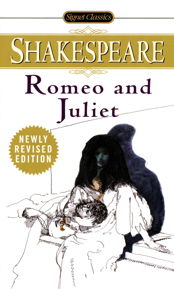 a paper on vocabulary in the play romeo and juliet Comparative essay romeo & juliet 'romeo and juliet' and 'the west side story' are both movies based on william shakespeare's playthey are very similar.