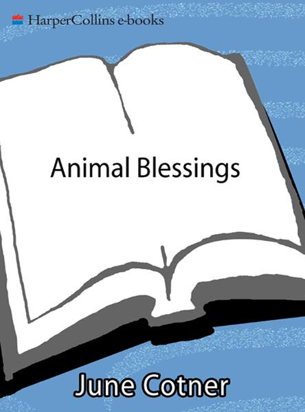 Animal Blessings: Prayers and Poems Celebrating our Pets By: June Cotner