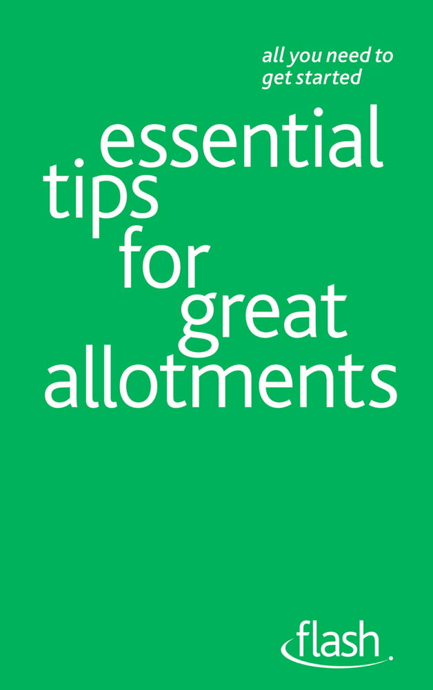 Essential Tips for Great Allotments