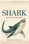 Shark: In Peril In The Sea