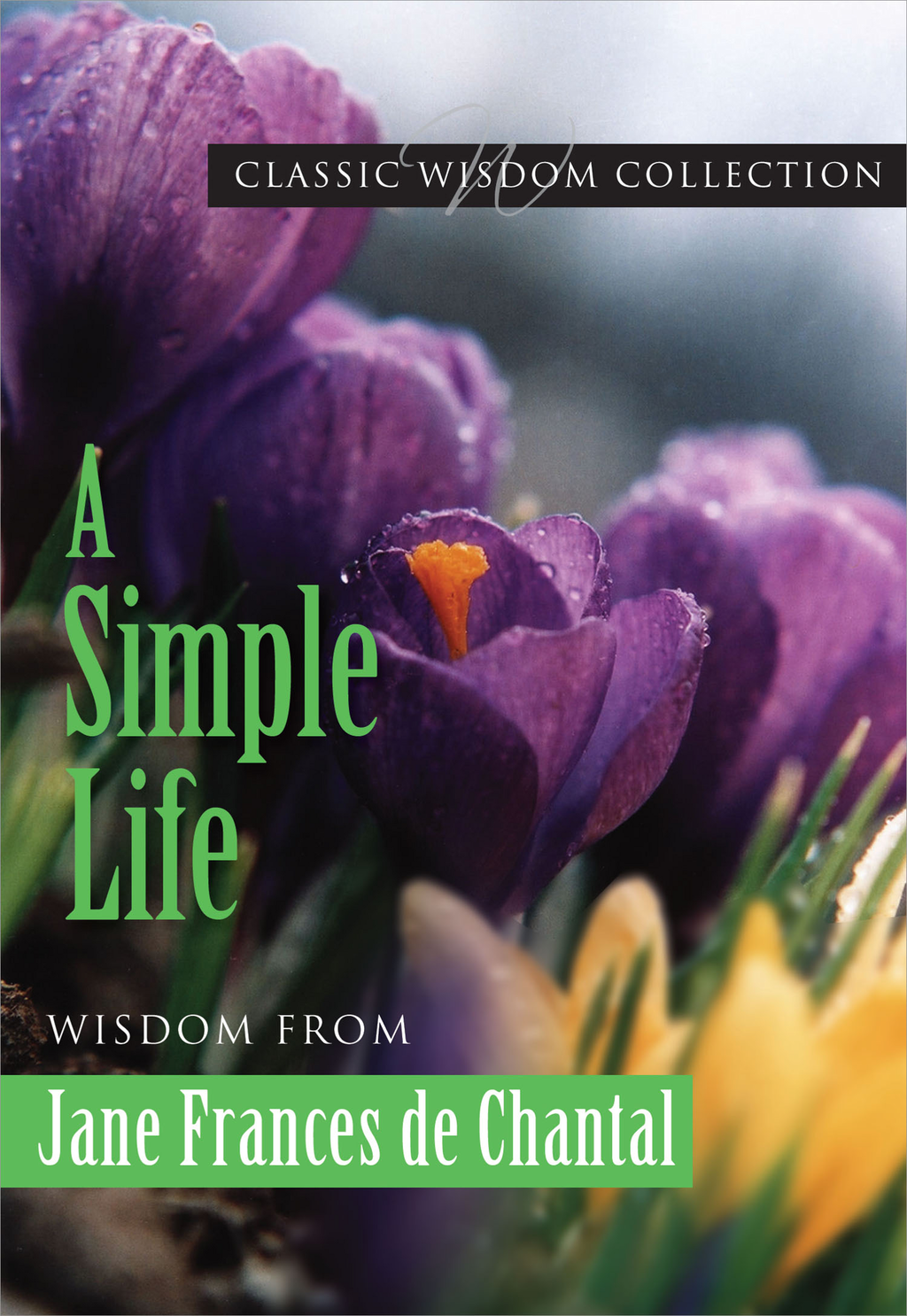 A Simple Life: Wisdom from Jane Frances de Chantal