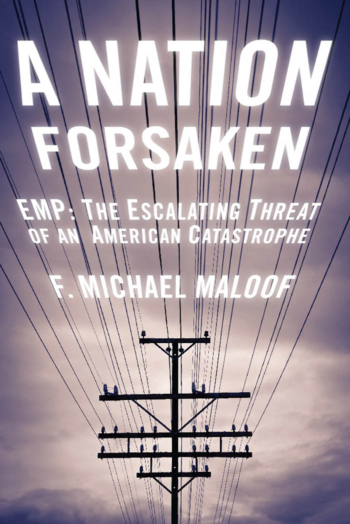 A Nation Forsaken By: Michael Maloof