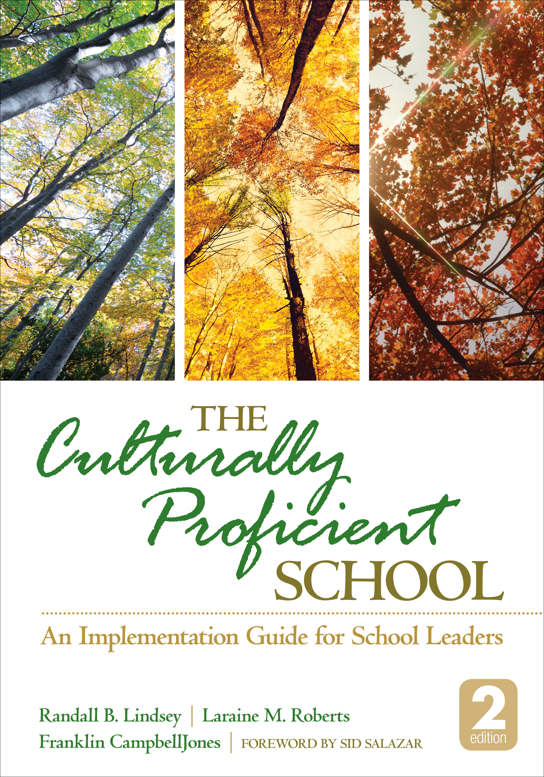 The Culturally Proficient School An Implementation Guide for School Leaders