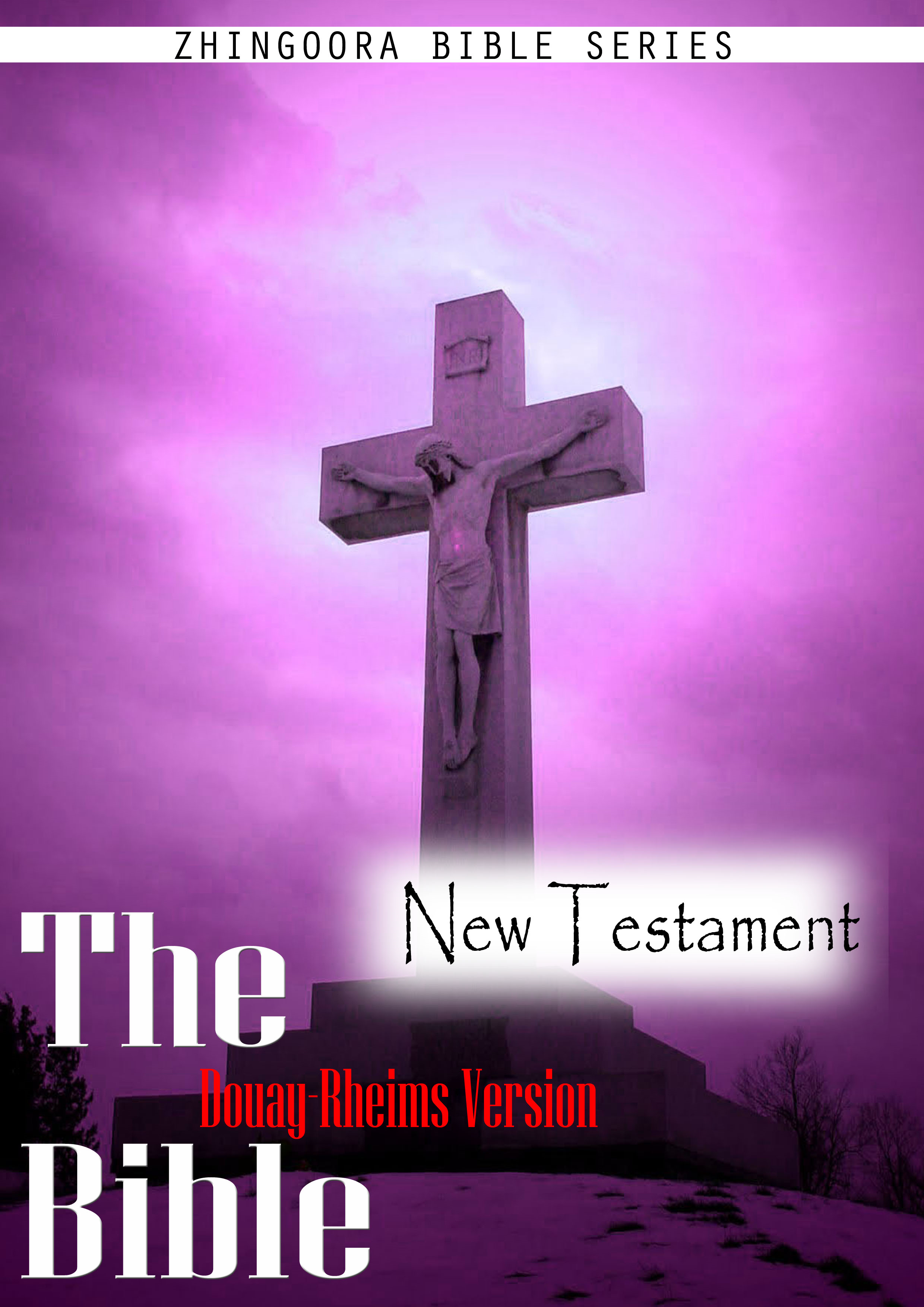 Holy Bible, Douay-Rheims, New Testament By: Zhingoora Bible Series