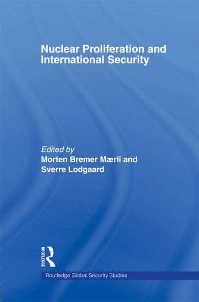 international security essay