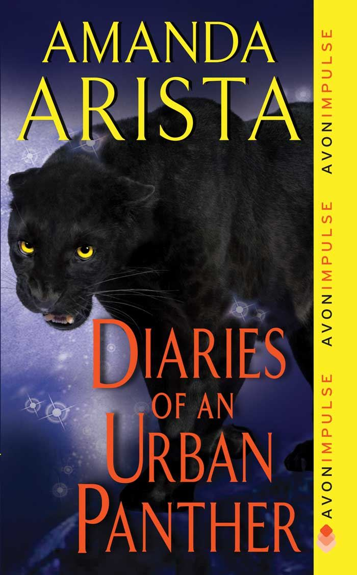 Book Cover: Diaries of an Urban Panther