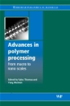 Advances In Polymer Processing: From Macro- To Nano- Scales