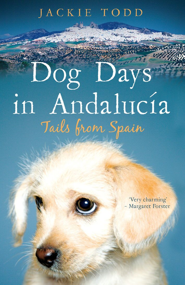 Dog Days in Andalucía By: Jackie Todd