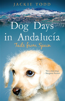 Dog Days in Andalucía Tails from Spain