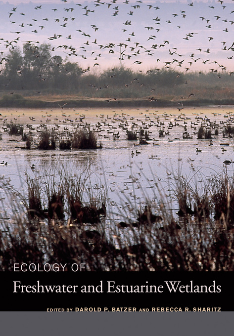 Ecology of Freshwater and Estuarine Wetlands