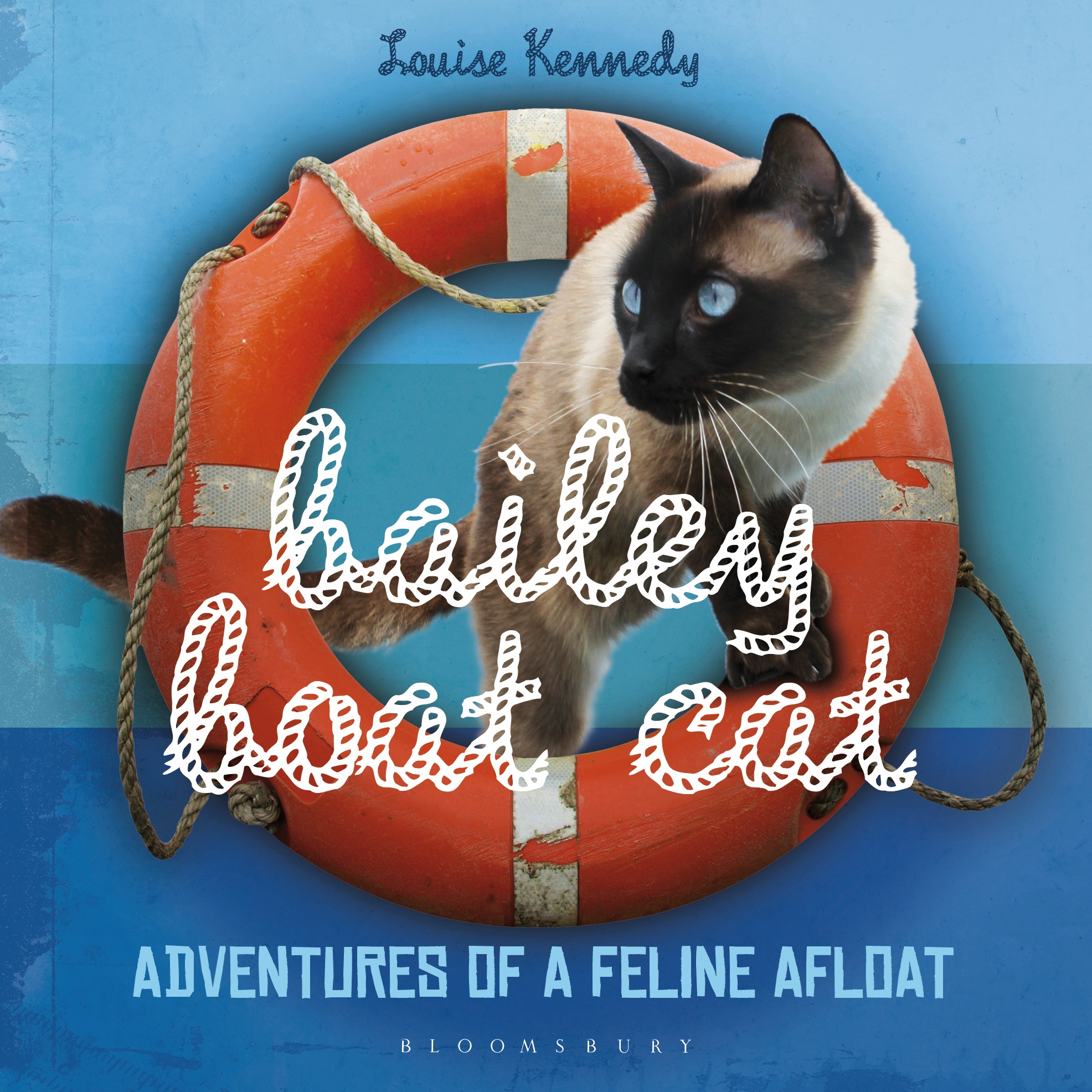 Bailey Boat Cat Adventures of a Feline Afloat
