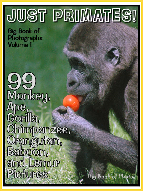 99 Pictures: Just Primate Photos! Big Book of Monkey, Ape, Gorilla, Chimpanzee, Orangutan, Baboon, and Lemur Photographs, Vol. 1