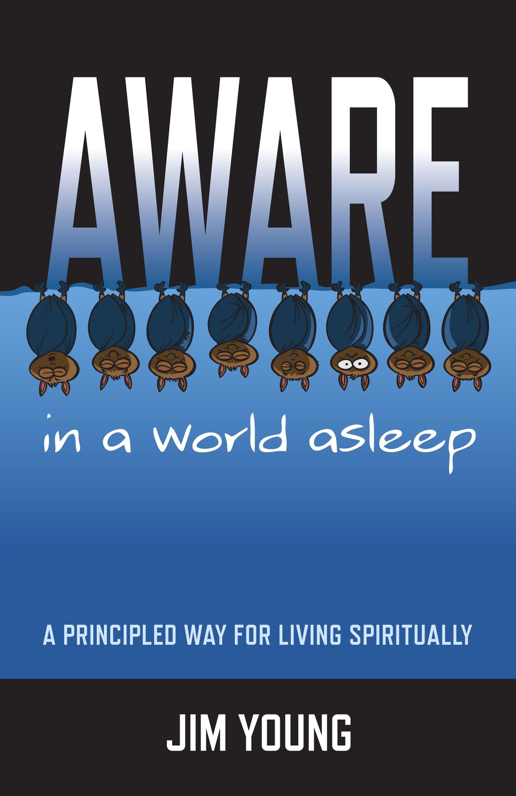 Aware In A World Asleep: A Principled Wa