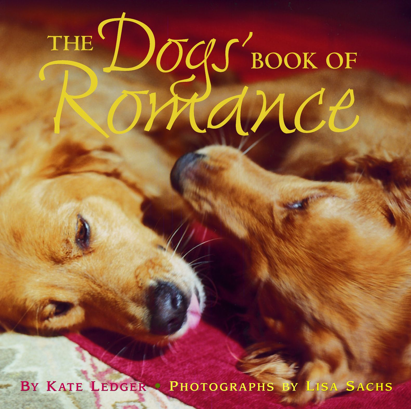 The Dogs' Book of Romance By: Cindy Sacks,Kate Ledger