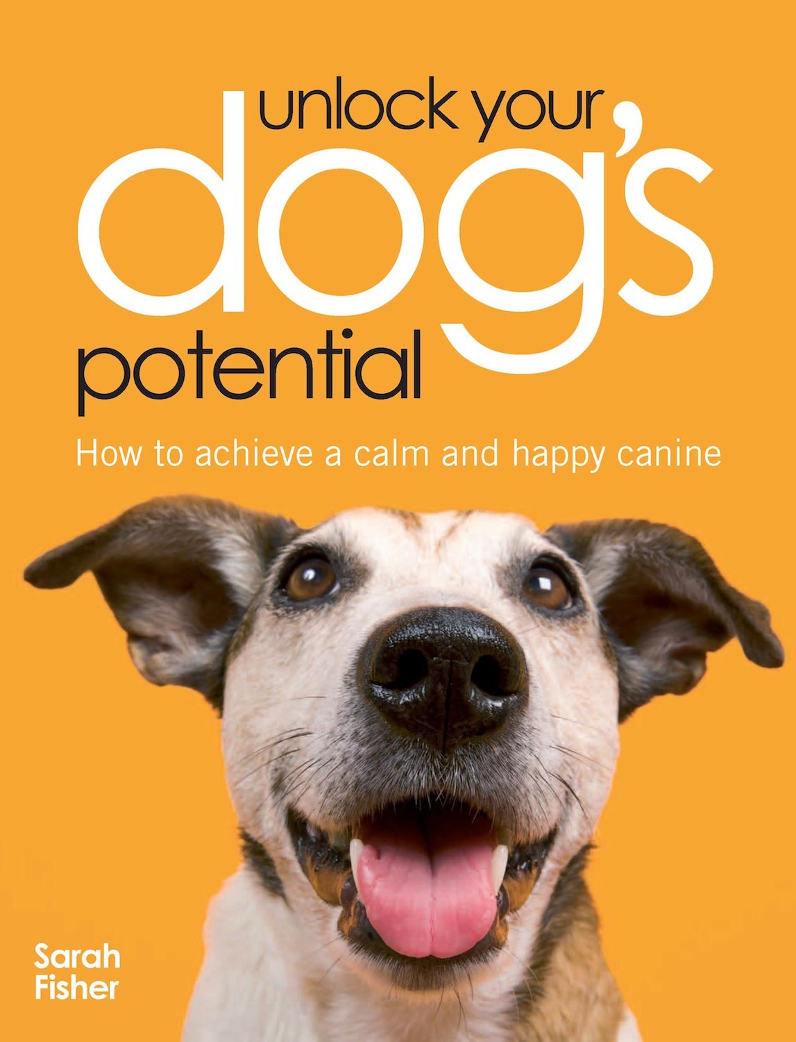 Unlock Your Dog's Potential: How to Achieve a Calm and Happy Canine