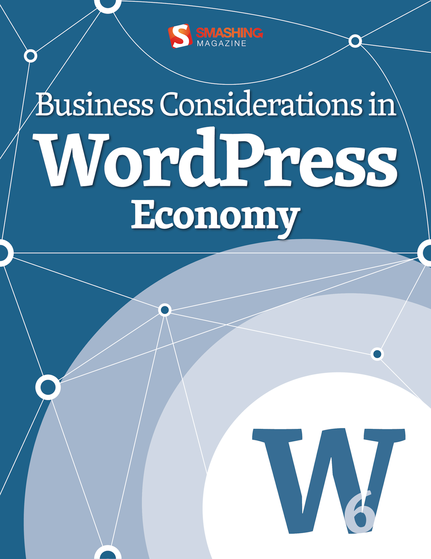 Business Considerations in WordPress Economy