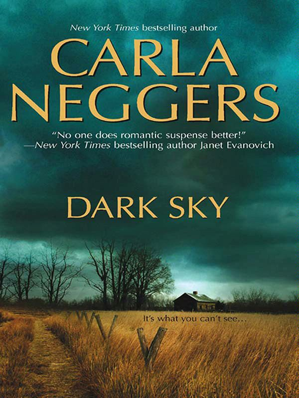 Dark Sky By: Carla Neggers