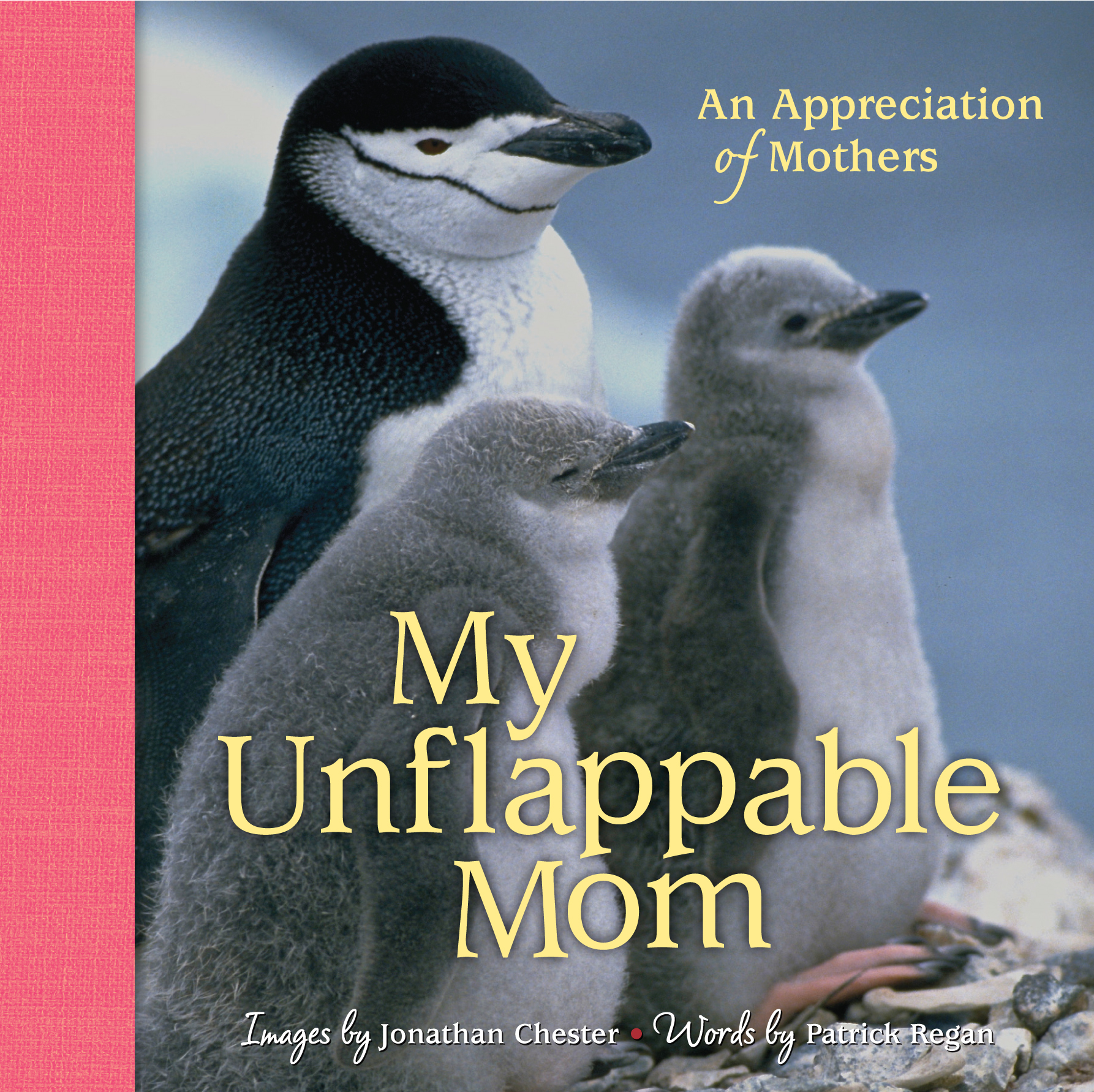 My Unflappable Mom By: Jonathan Chester,Patrick Regan