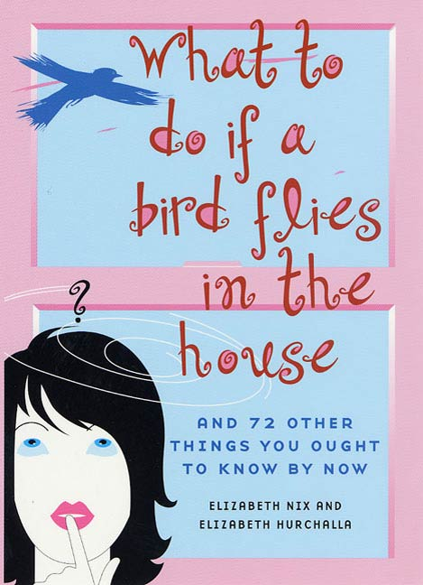 What to Do If a Bird Flies in the House By: Elizabeth Hurchalla,Elizabeth Nix