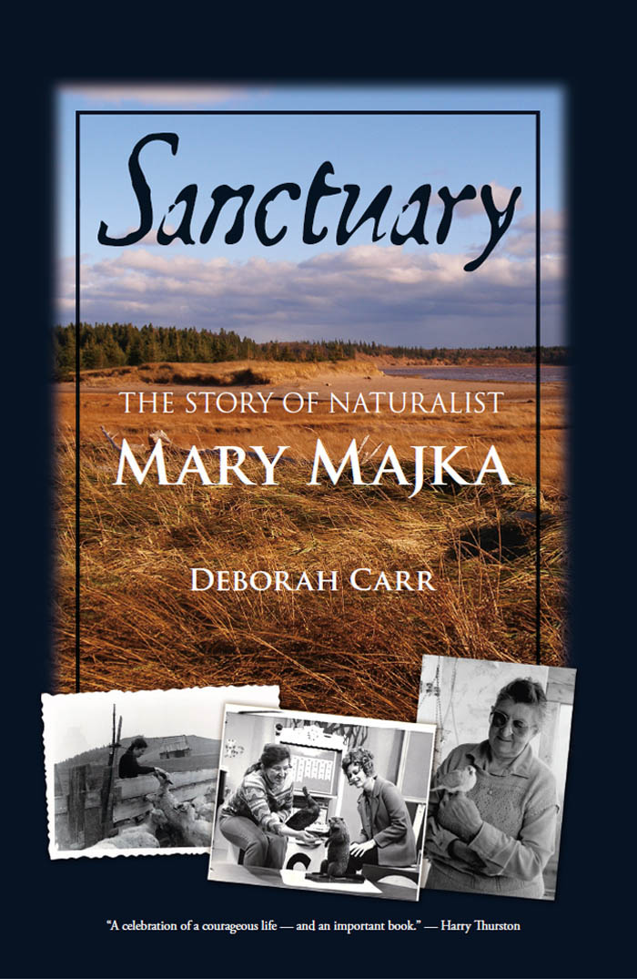 Sanctuary By: Deborah Carr