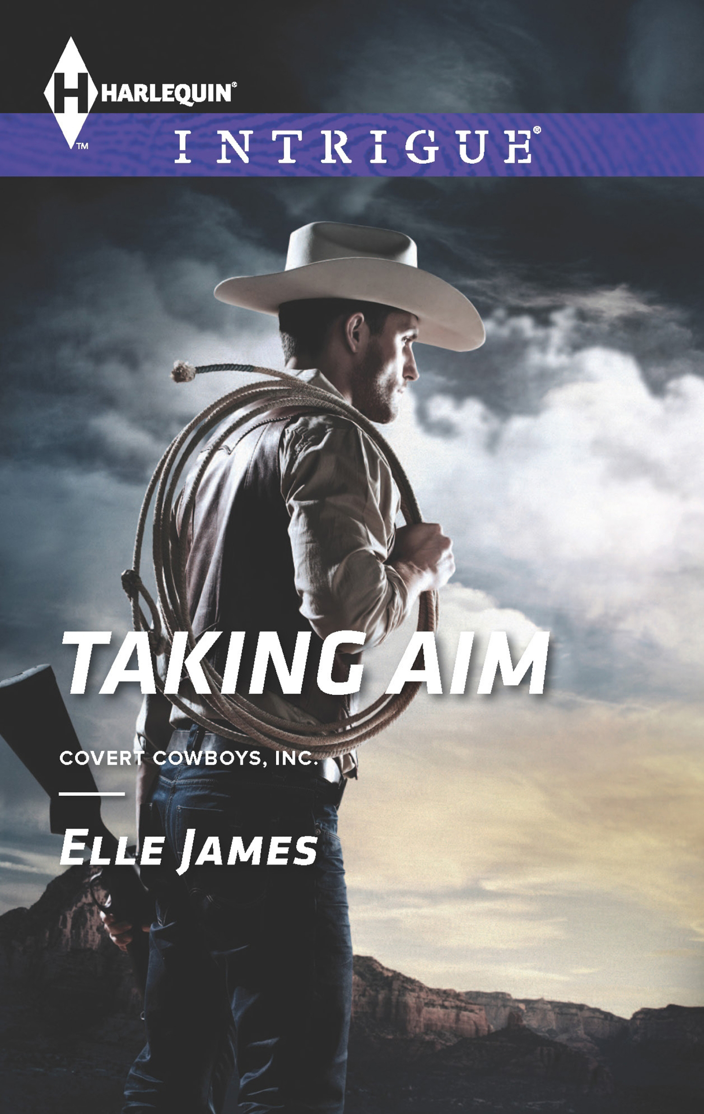 Book Cover: Taking Aim