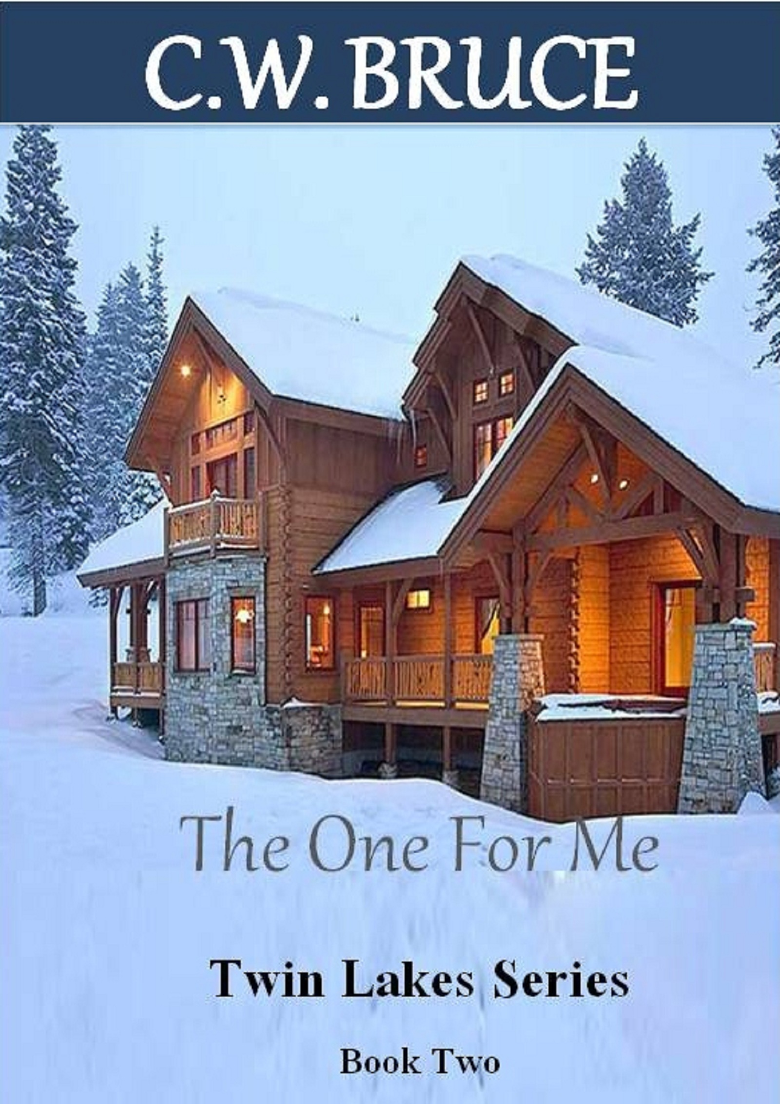 The One For Me: Twin Lakes Series Book 2 By: Charity Bruce