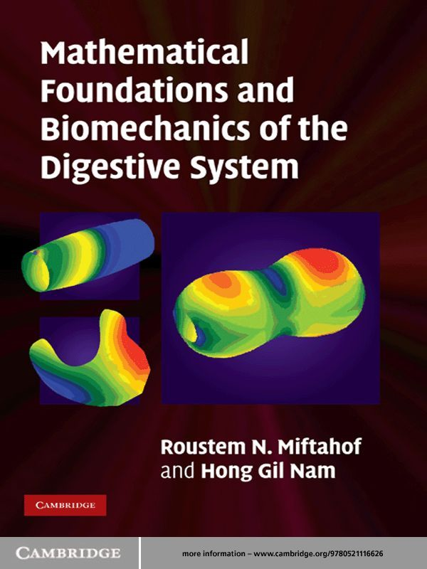 Mathematical Foundations and Biomechanics of the Digestive System