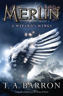 download The Wizard's Wings: Book 5 book