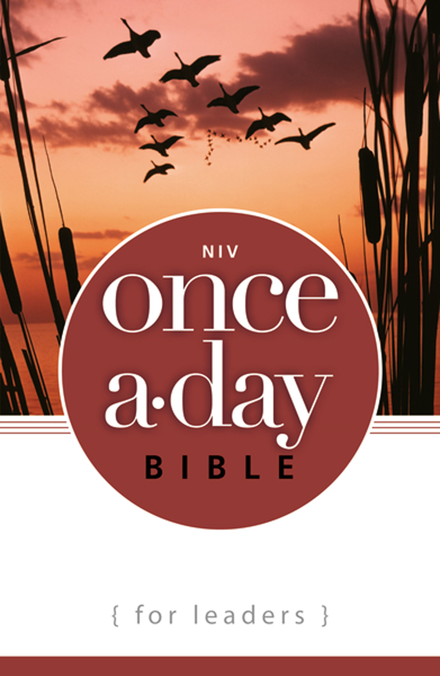 NIV Once-A-Day Bible for Leaders By: Zondervan