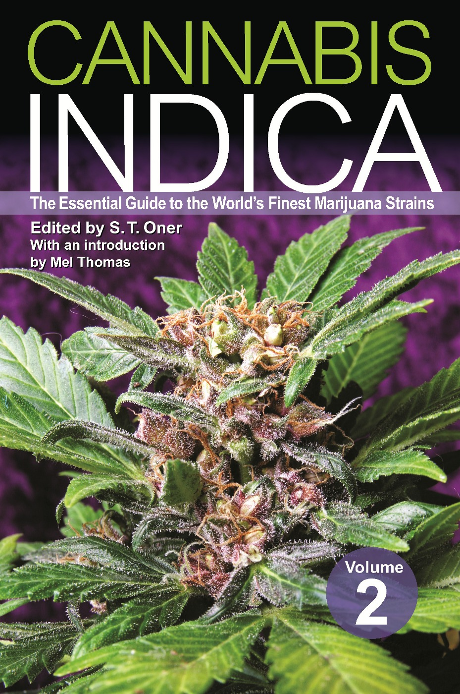 Cannabis Indica Volume 2: The Essential Guide to the World's Finest Marijuana Strains By: